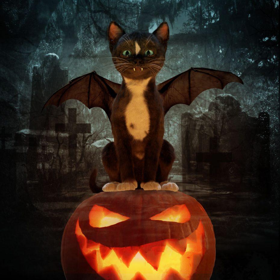 Felini wishes Happy Meoween - black cat with bat wings on pumpkin