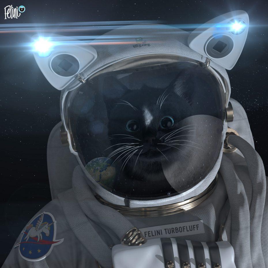 Felini Turbofluff flys to the moon: dearMoon project