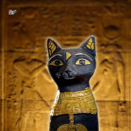 Shop Felini Cat God