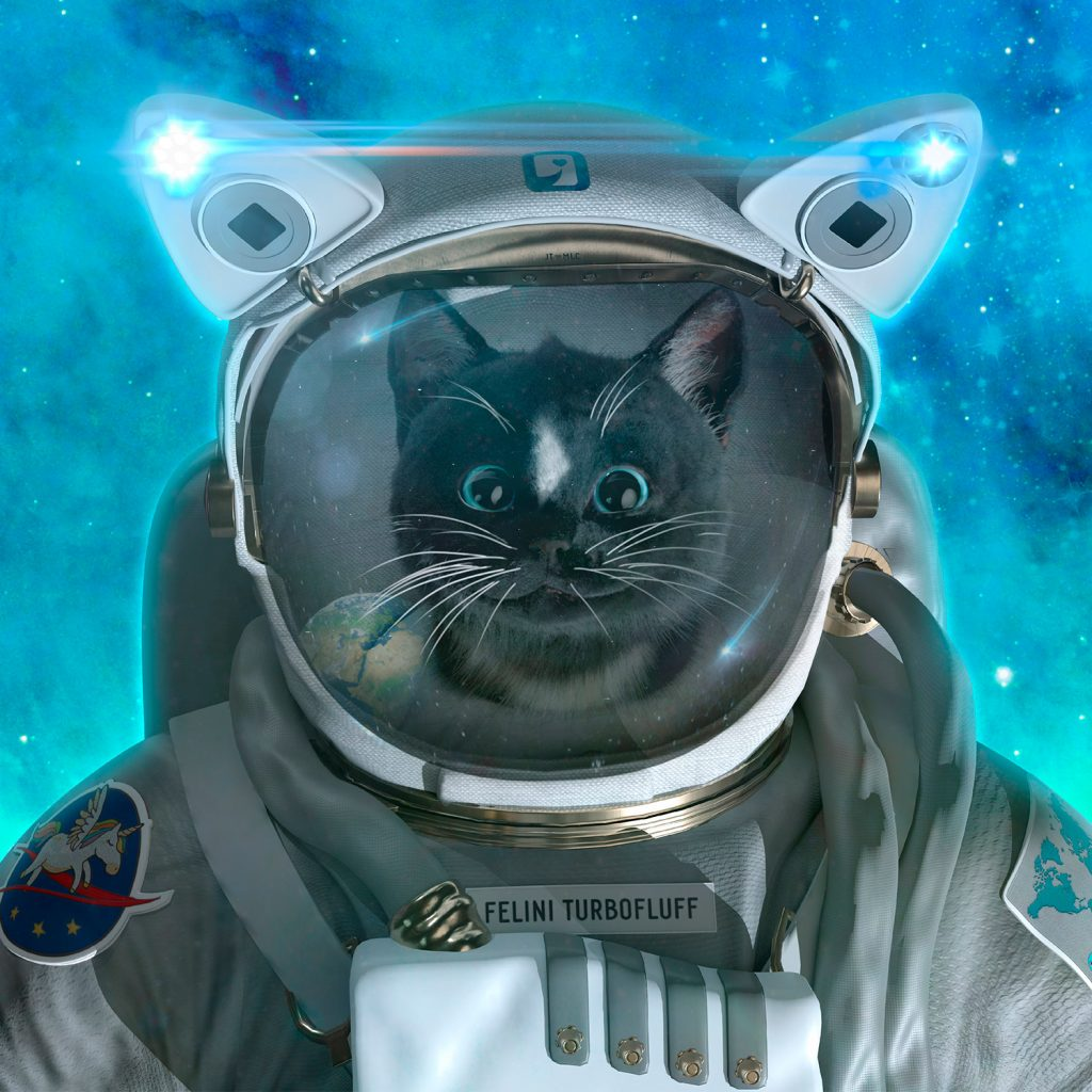 Felini Cat in Space Suit - Close Up With Kitty Face And Helmet