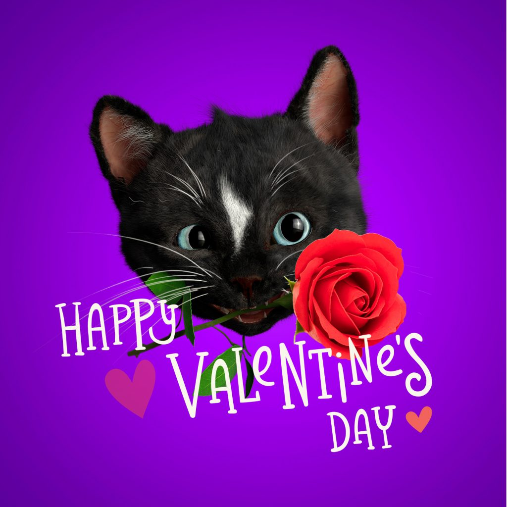 Cute Black Cat Felini holding a rose, letters saying Happy Valentine's Day