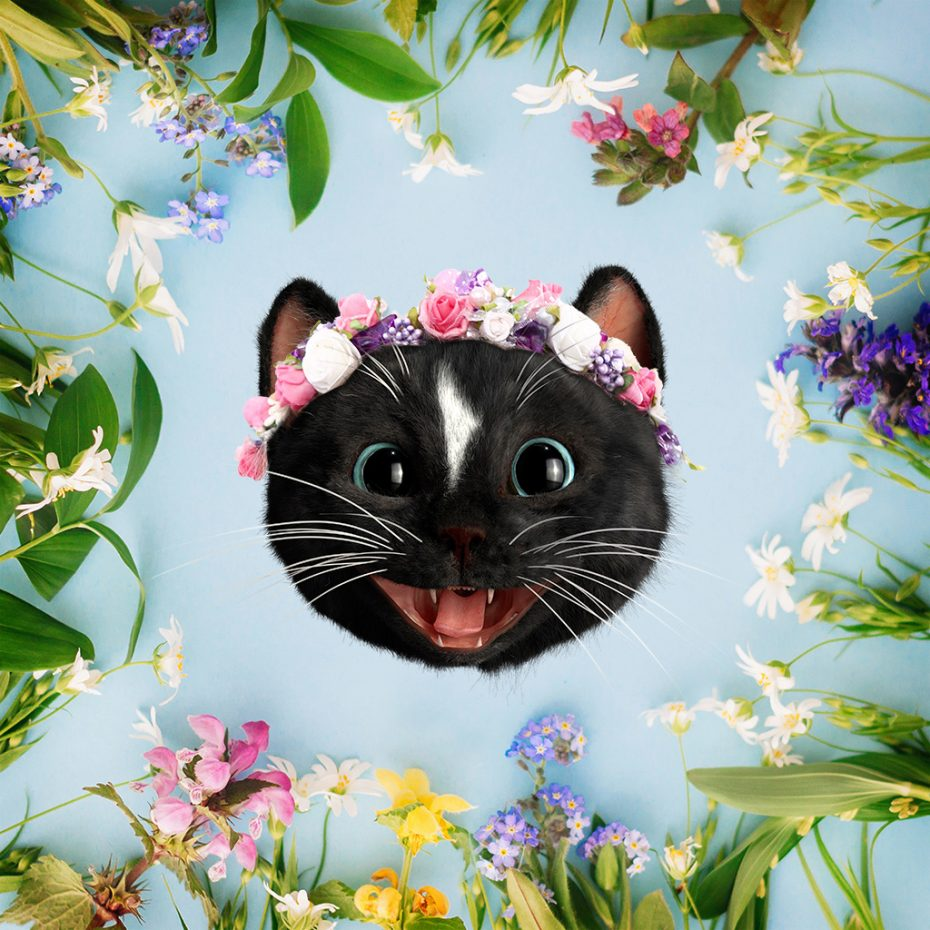 Happy Black Cat Head with Flower Band in circle of wildflowers
