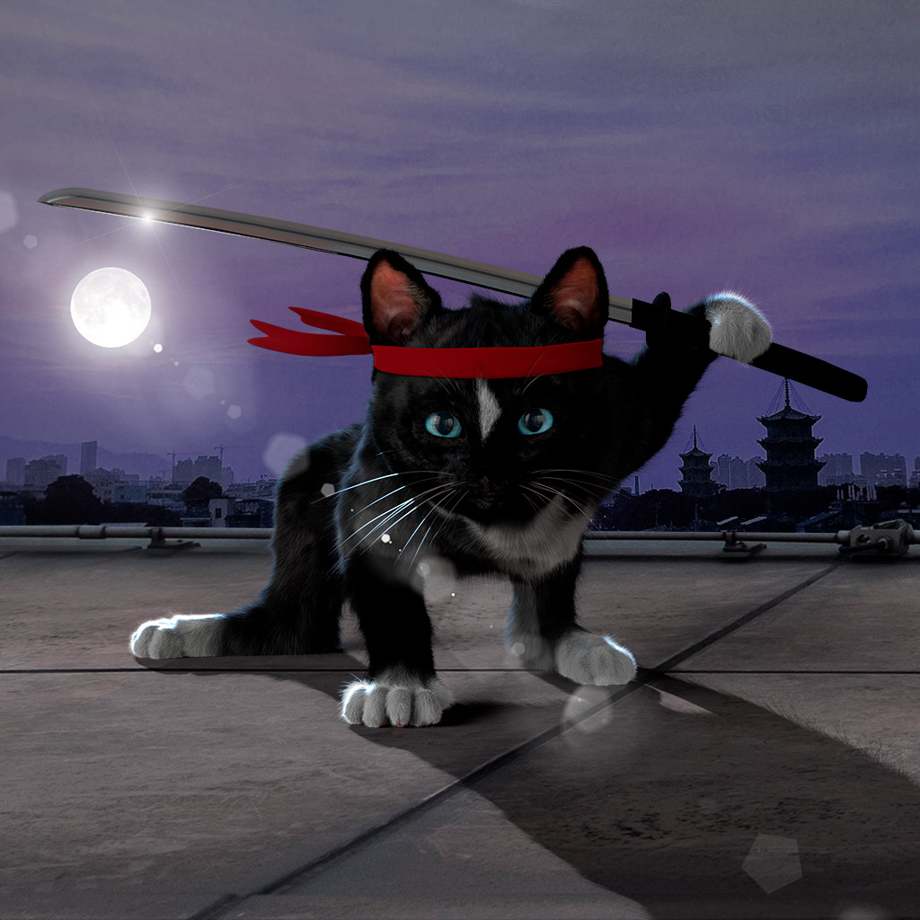 Cat with red headband performing ninja pose on rooftop in moonlight