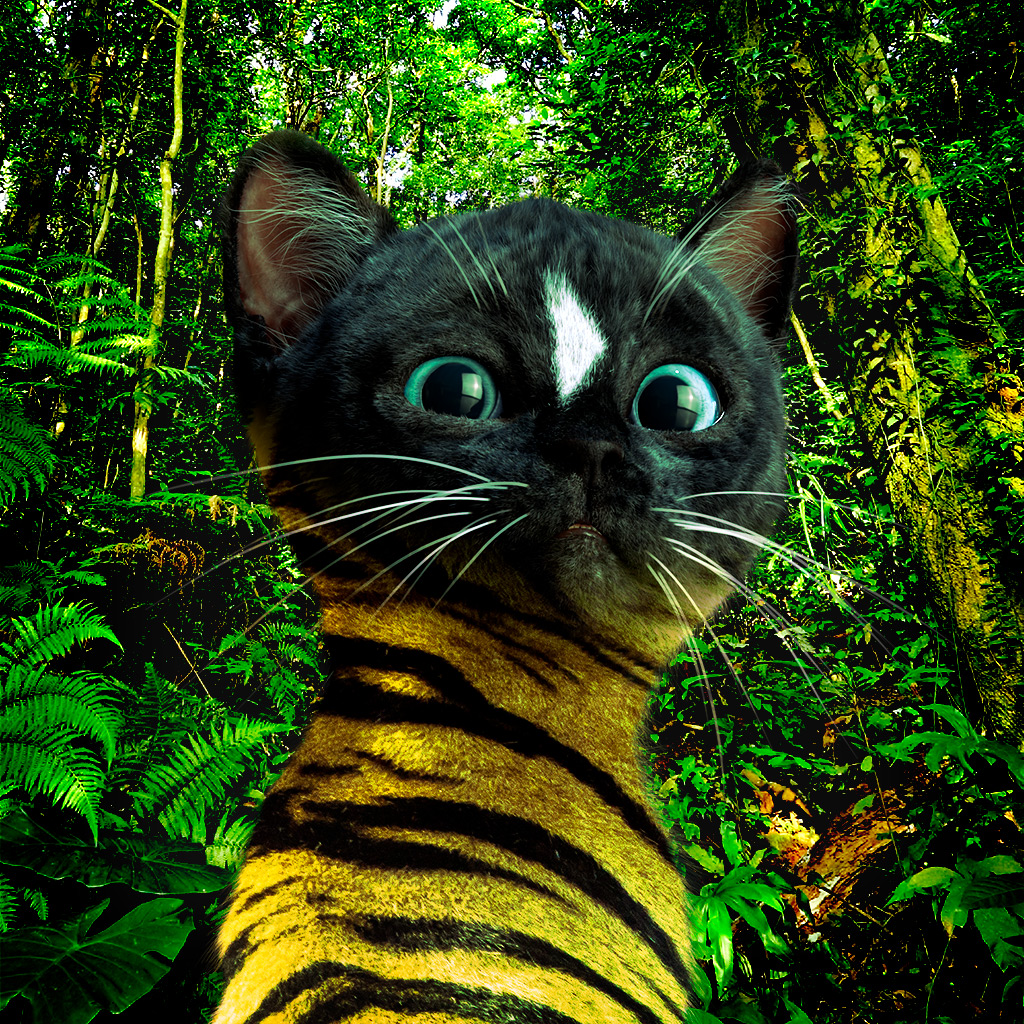 Felini the Kitty in jungle with Tiger Fur looking back at us
