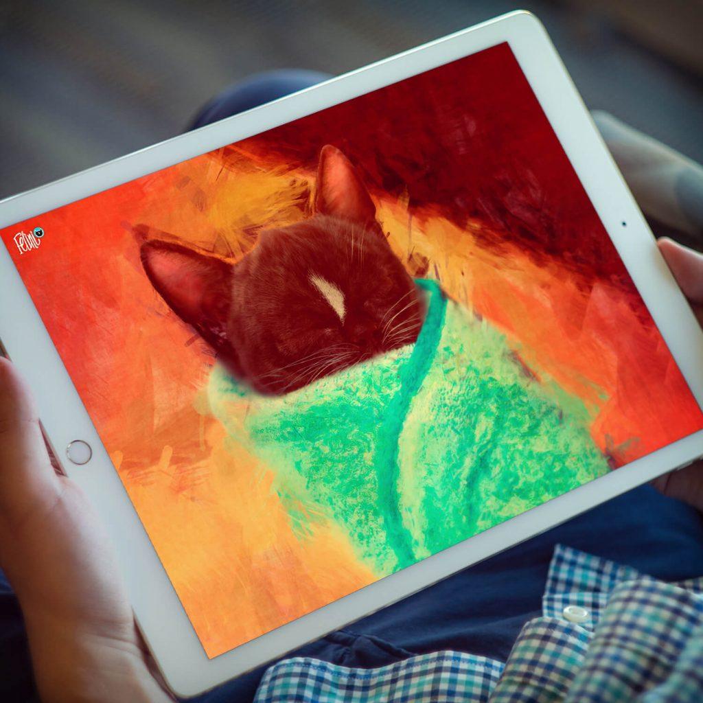 Felini the Kitty Cat Cute Purrito image on white IPad tablet on lap of man