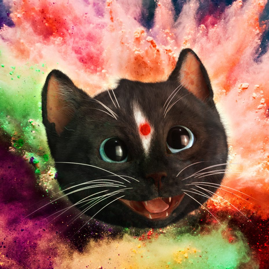 Felini Kitty is a happy cat with a red dot on the forehead celebrating holi the festival of colors