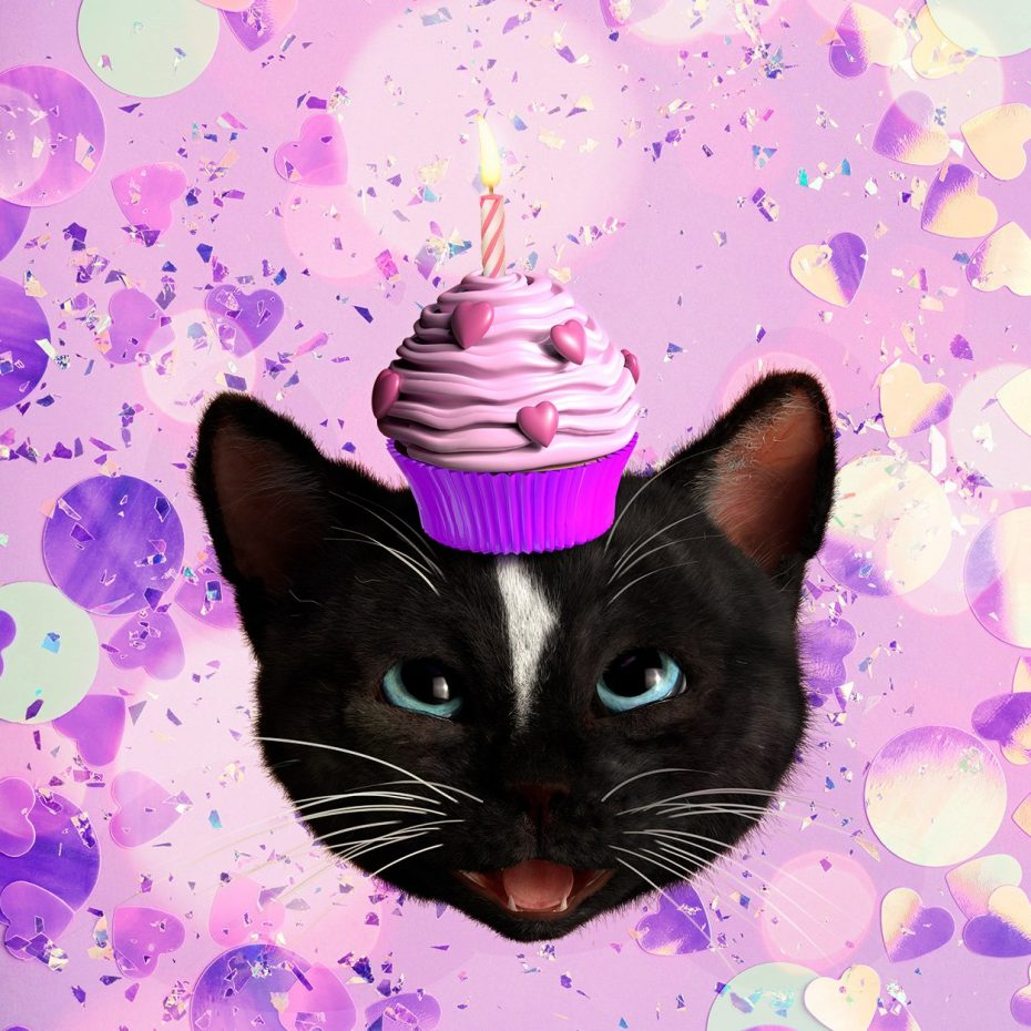 Felini Cat Head with Birthday Cupcat and Candle on his Head on purple party background
