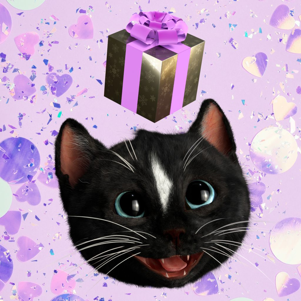 Felini the Kitty Cat happily looking up to a pink ribboned parcel above his head