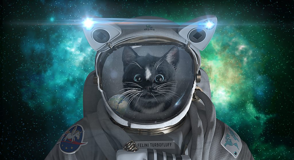 Felini Kitty Astro Cat in Space Suit