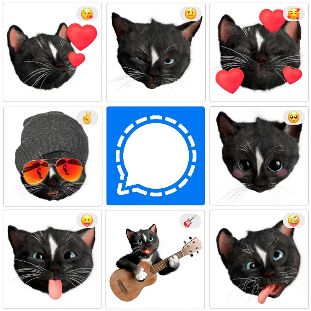 Felini the Kitty - Preview of Cat Emoji Stickers for the Signal messenger - Free kitties to spice up your messages on Signal. Enjoy!