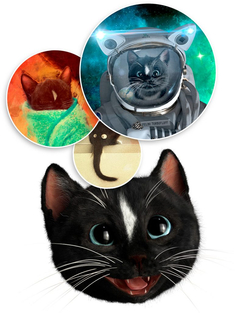 Image Link Showing Felini and some of his cute and funny cat images and videos: Astro cat, purrito and elefant cat