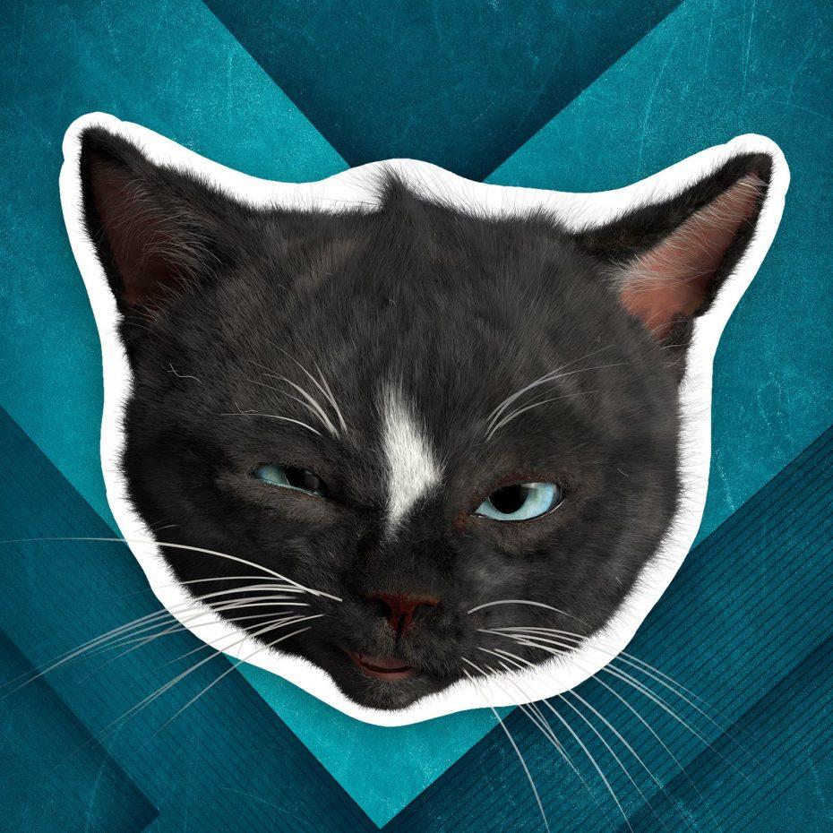 Felini cat head sticker looking suspiciously, equivalent to the raised eye brow emoji