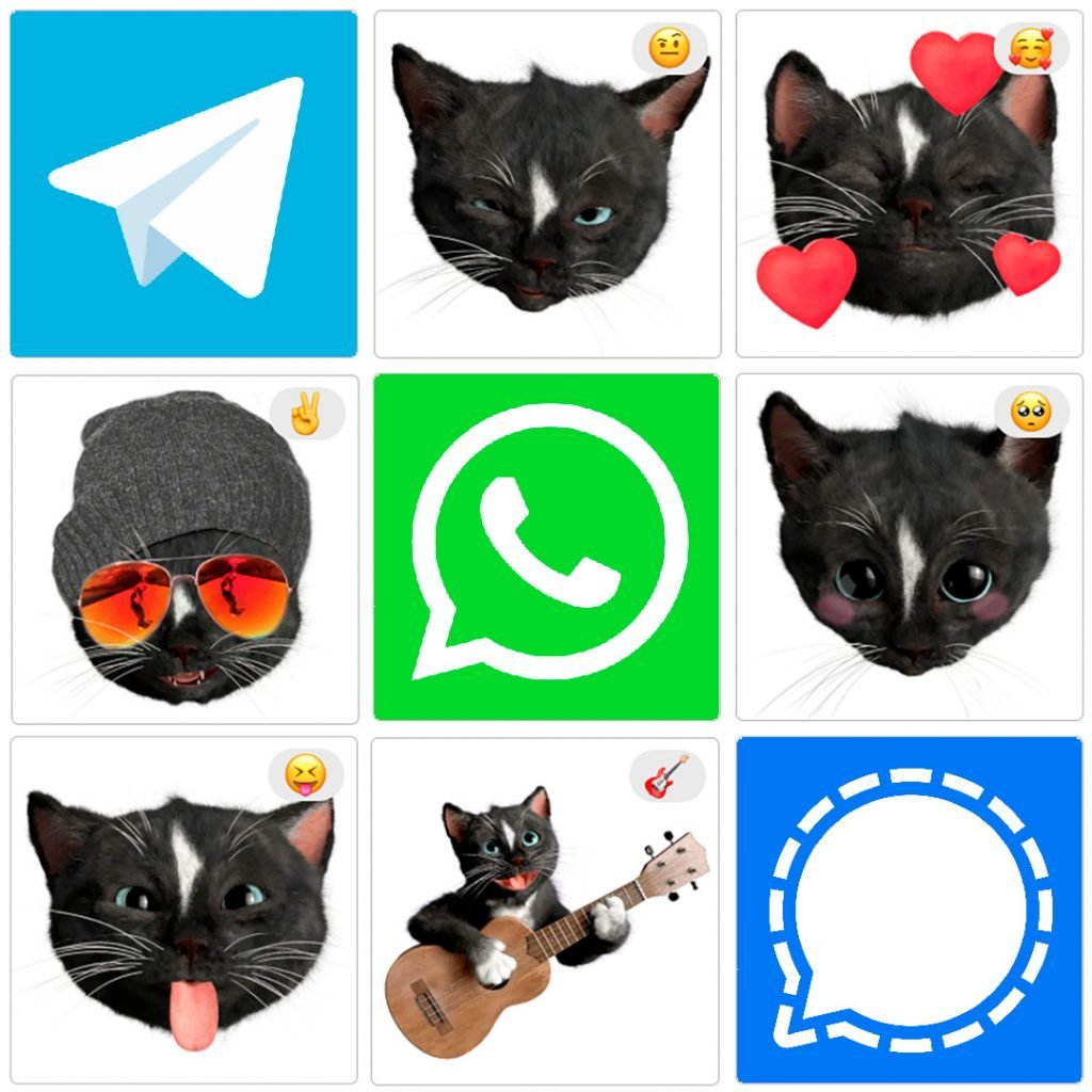 Felini the Kitty - Preview of Cat Emoji Stickers for the Signal messenger - Free kitties to spice up your messages on Whatsapp, Telegram and Signal. Enjoy!