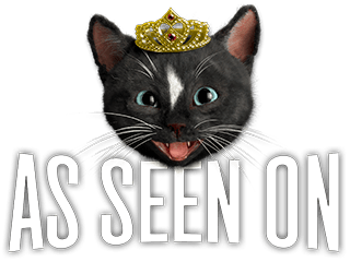 Felini Kitty Cat in the news
